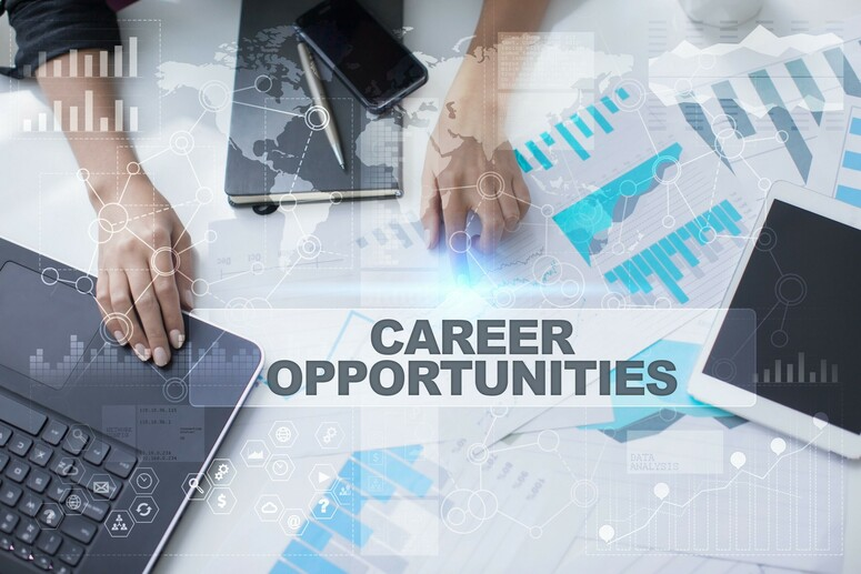 Photo of a person work with the words Career Opportunties